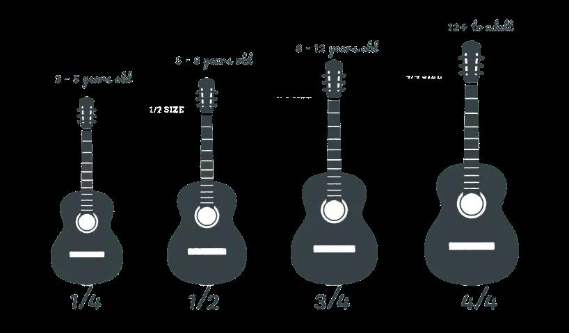 גדלים שונים של גיטרות